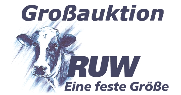 Grossauktion-Logo.jpg