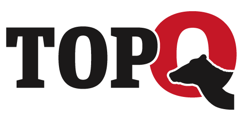 TopQ-Logo.png